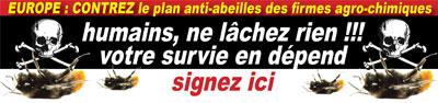 EUROPE : contrez le plan anti-abeilles des firmes agro-chimiques : signez la pétition