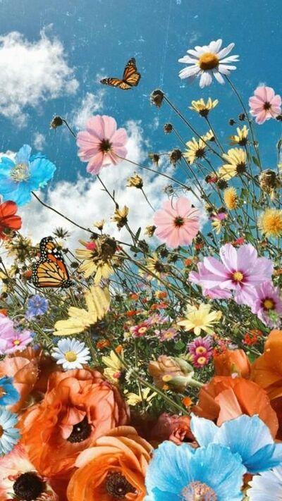 Paradis des fleurs