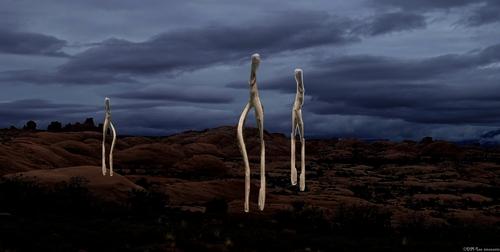 Les marcheurs de la nuit