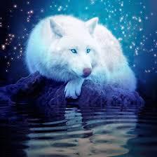 """Résultat de recherche d'images pour """"loup  bleu anime"""""""