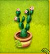 pot de cactus à feuilles fleur-rose
