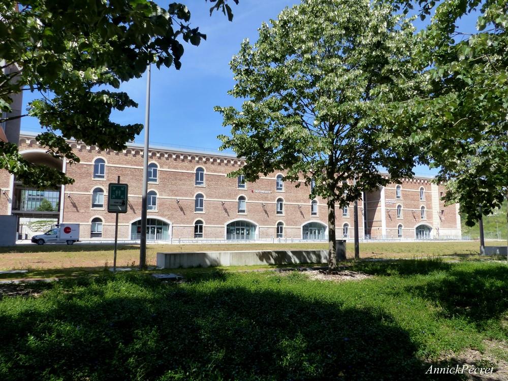 Une université dans une citadelle