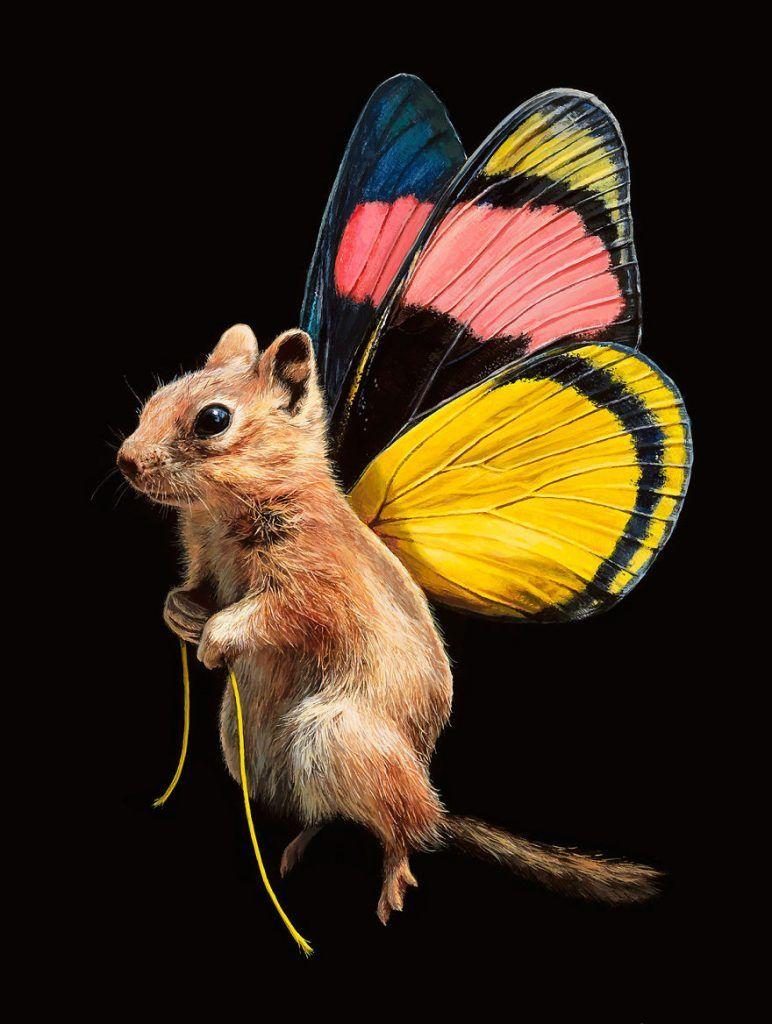 Des-peintures-de-souris-avec-des-ailes-de-papillon-par-Lisa-Ericson-5 |  Peinture de souris, Ailes de papillon, Peinture naturelle
