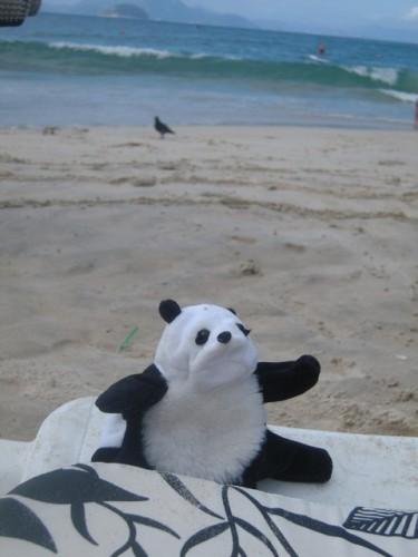 un panda à Rio 022