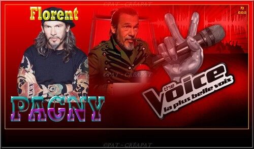 Florent PAGNY 005