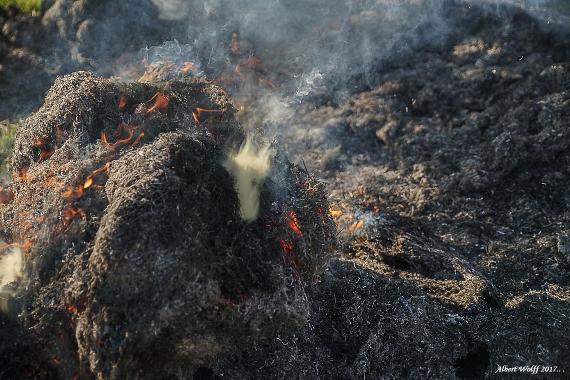Le feu contre le gel