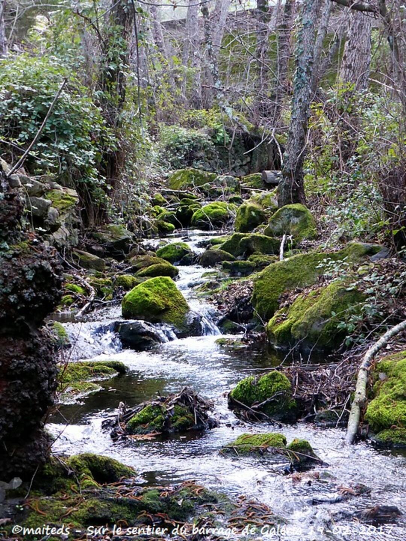 Sur le sentier du barrage de Galéria - Corse (2)