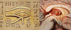 L'Oudjat ou Oeil d'Horus