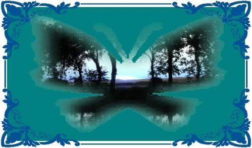 paysage-papillon-encadrement.jpg