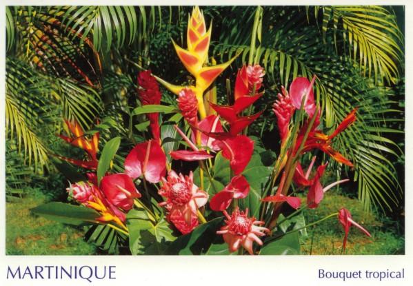 Martinique.JPG