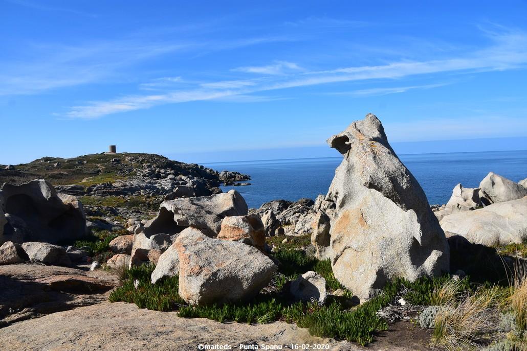 Punta Spanu - Lumio - Corse (2)