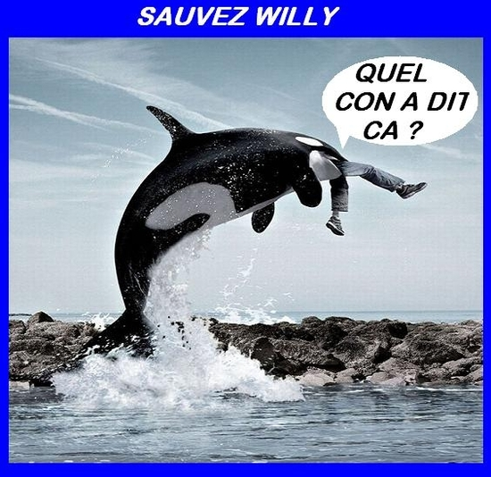 quel con sauver willy