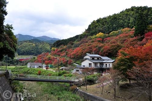 automne à fukuoka
