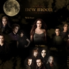 calendrier-2010-twilight-new-moon.jpg