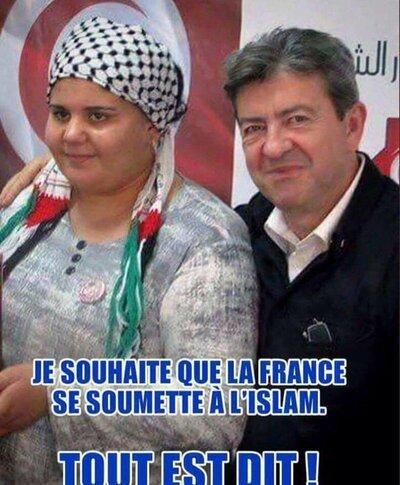 Fillon, les Verts, islam etc... La vérité fait mal  !
