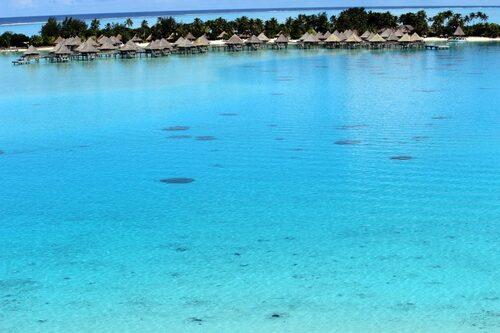 Maita'i Mauruuru a Bora Bora / Polynésie Française