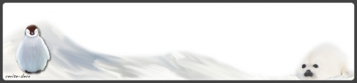 design hivernal