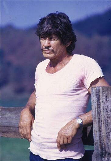The late charles bronson