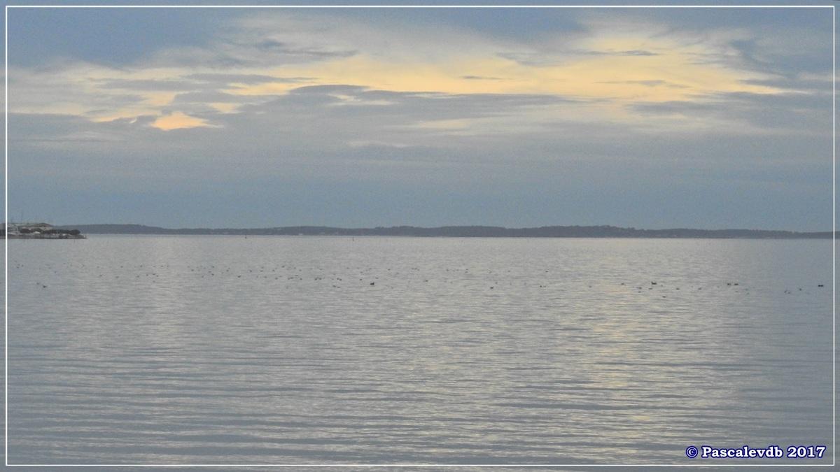 Entre le Port du Rocher et le Port de La Hume - Fin Janvier 2017 - 7/7