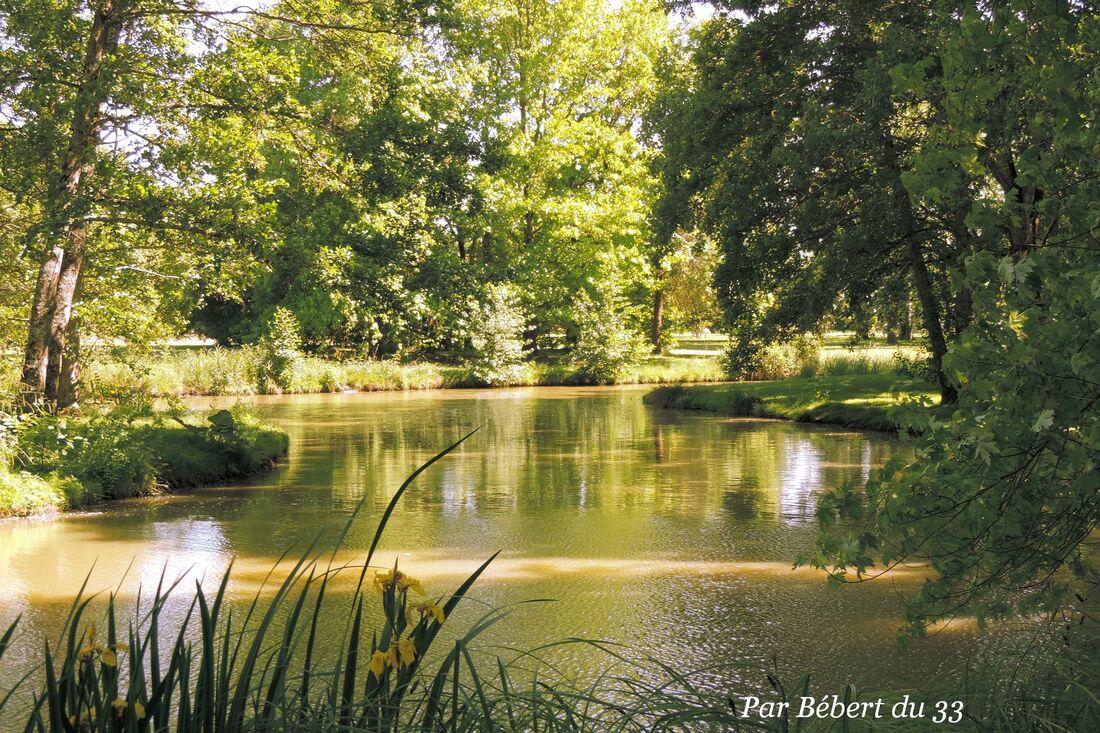 cliques sur le plan d'eau du parc floral à Bordeaux