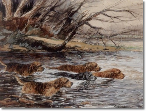 reuben-ward-binks-gouche-painting-otterhounds-working-a-bec