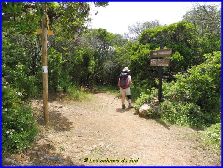 Corse, le sentier de Guy le facteur de Ghjirulatu