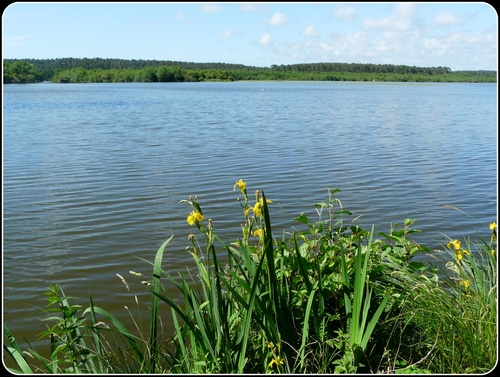 Le lac de Souston