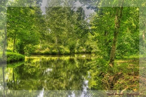 Marais Poitevin - Ruine au bord de la rivière