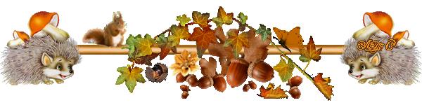 barre de séparation automne en avant-goût pour mettre de la couleur