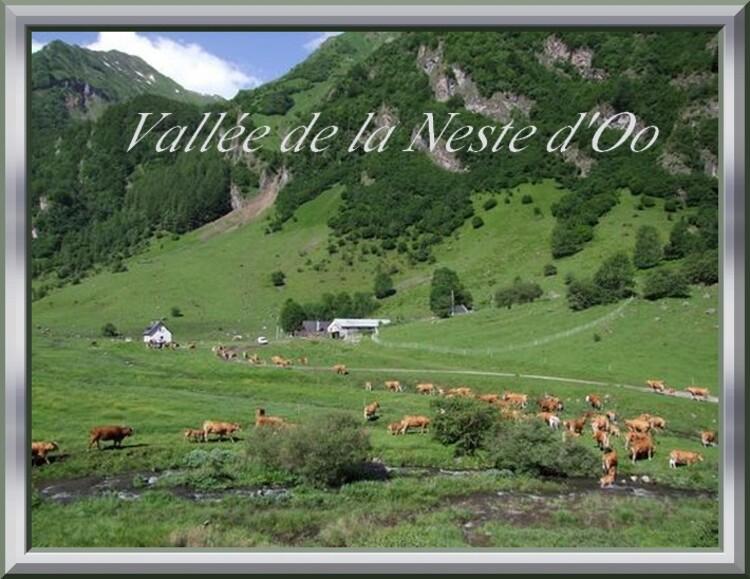 Torrents Sauvages (Pyrénées) : Vallée de la Neste d'Oo