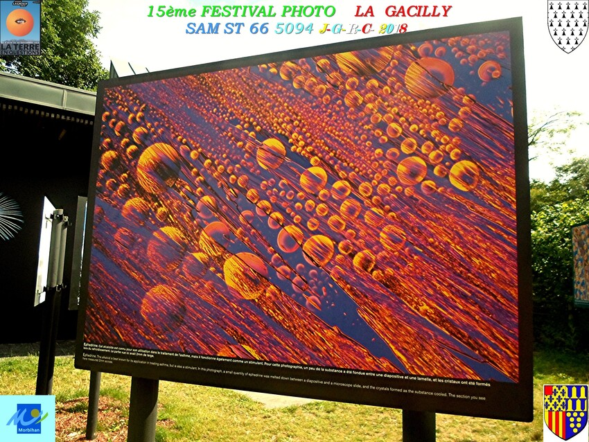 FESTIVAL  PHOTO  2018  LA  GACILLY      D     06/09/2018   2/2