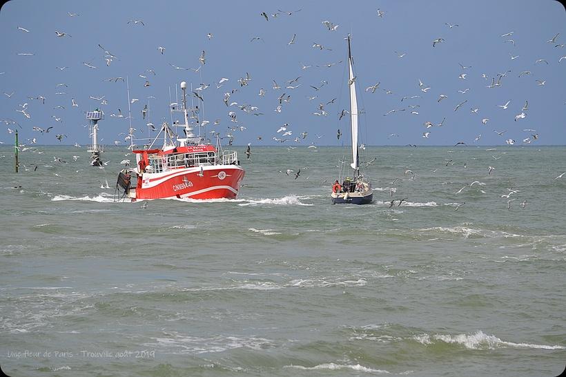 Trouville : Le marché aux poissons