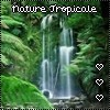 Nature Tropicale