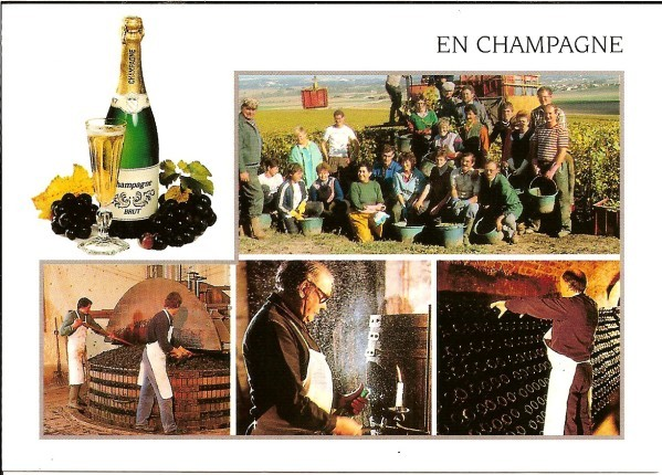 Champagne-Jojo.jpg