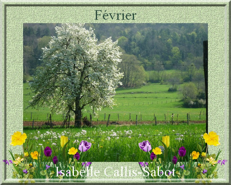 """"""" Février """" poème d'Isabelle Callis-Sabot"""