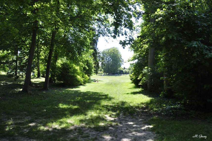 arbres-1533.jpg
