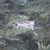 Riom depuis le plateau d\'Apchon