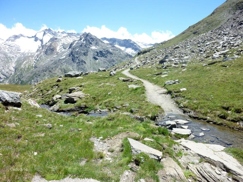 Alpes, juillet 2016 : 6 -dans le parc de la Vanoise