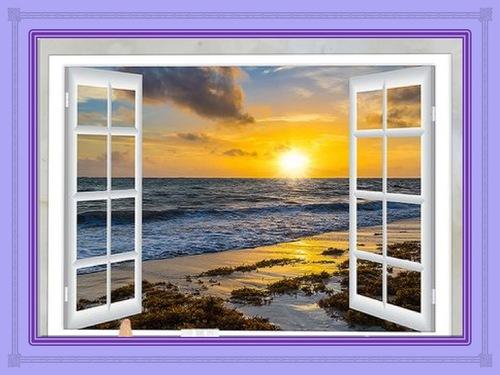 La fenêtre de la vie