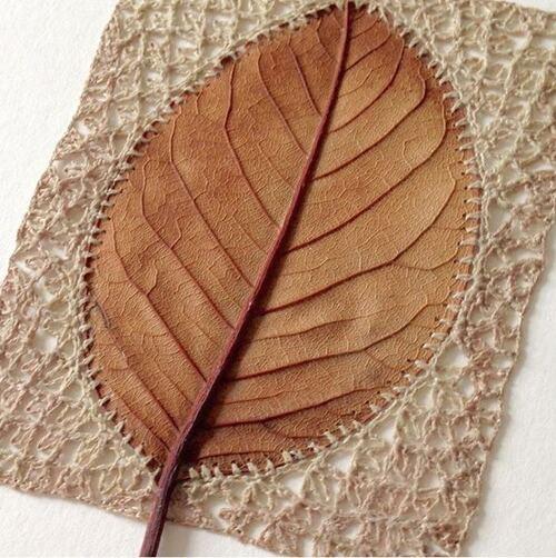 Couture sur feuilles d'arbre
