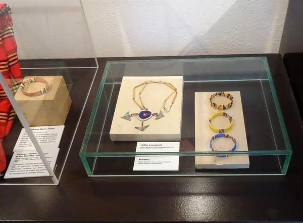 """""""Savane"""", une très belle exposition au musée Buffon de Montbard"""