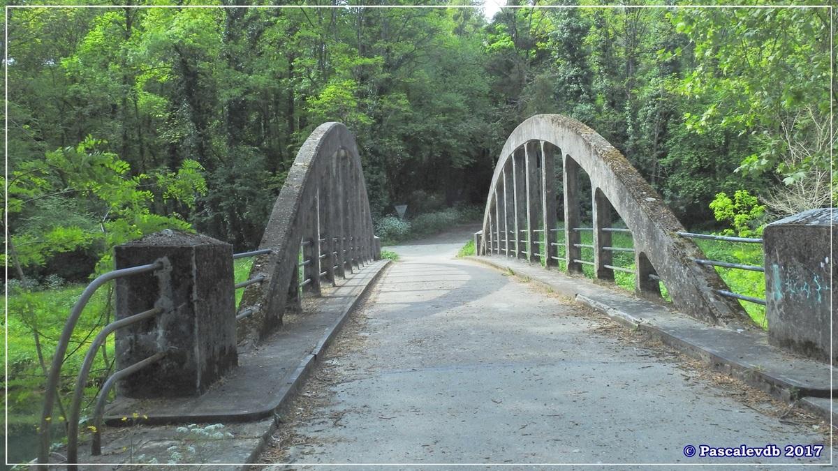 Printemps le long du canal latéral à la Garonne - Avril 2017 - 2/10