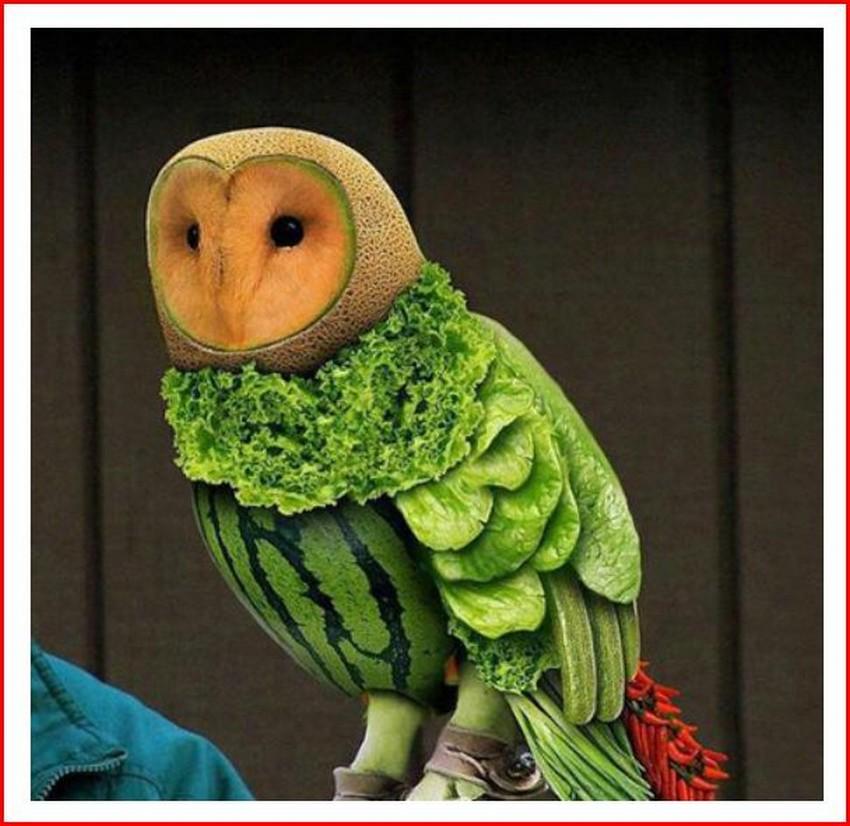 Façon originale de faire aimer les légumes aux Enfants