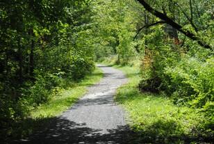 Dans Nature Trail