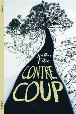Couverture de The shock of the fall : Contrecoups