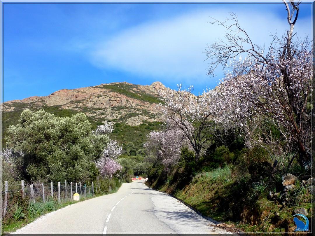 Sur la route intérieure de Galéria à Calvi Corse