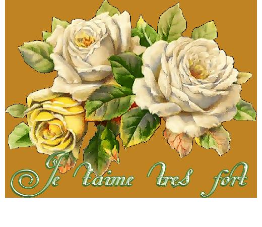 Des roses pour maman ...ou autre 2
