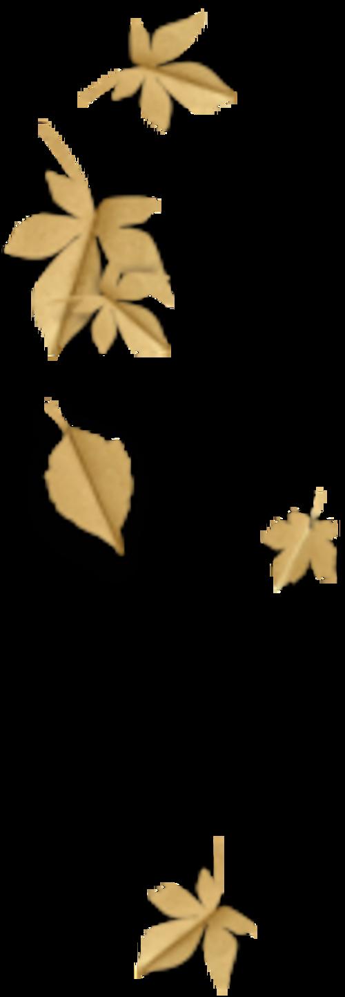 Feuilles d'automne 7