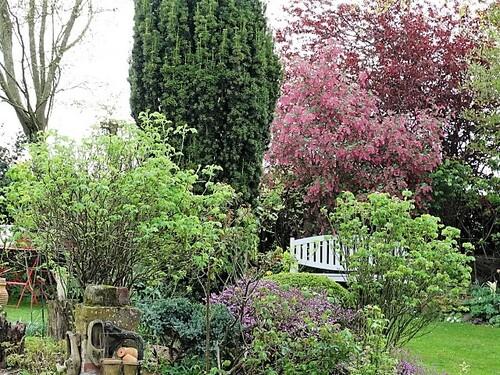 Un tour du jardin