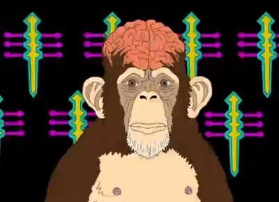 theorie-du-singe-enivre.png
